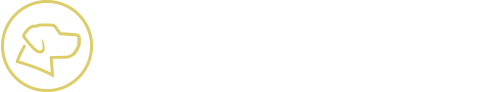 YellowDog Marketing & Design