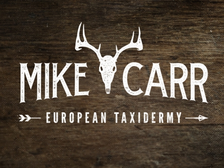 Mike Carr - European Taxidermy